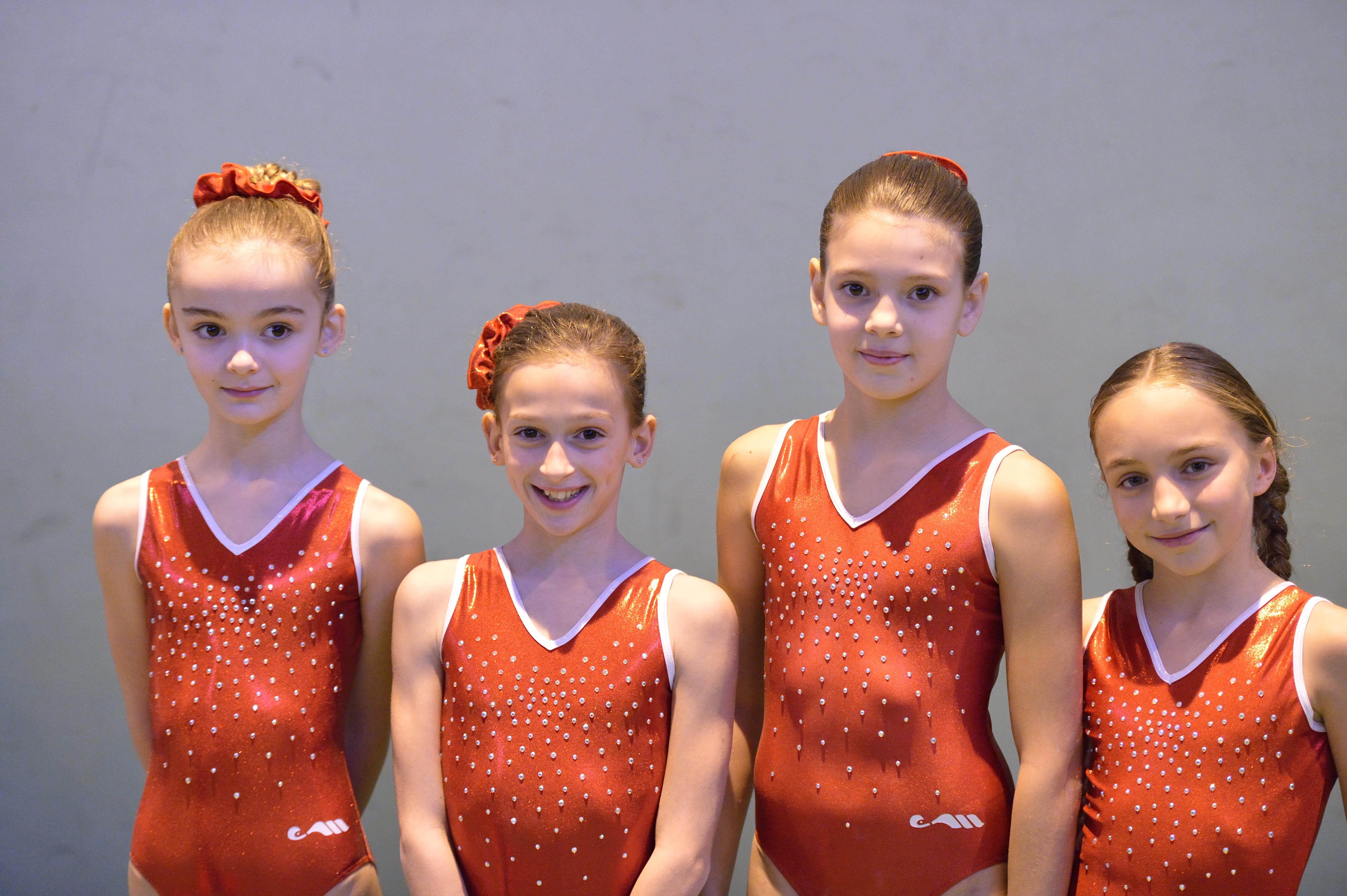 AVL gym – equipes benjamines fevrier 2014