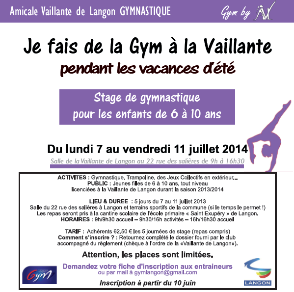 affiche stage gym loisir 2014