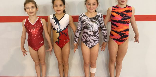 Vaillante gymnastique benjamines mars 2016